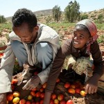 Is Africa ready to climb the value chain in agriculture?