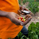 Can Technology Entice Youth to be Farmers?
