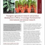 A strategic framework for transgenic research and product development in Africa
