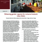 Enhancing gender capacity for inclusive livestock value chains