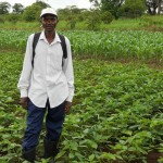 Conservation agriculture for Zambia – A resilient technology in times of climate change