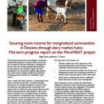 More milk in Tanzania – mid-term update reports progress and lessons