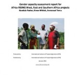 Just how much gender capacity exists in Africa RISING?