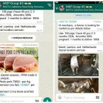 Whatsapp pig farmers! Uganda's innovation platforms connecting and sharing on smartphones