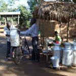 Tanzania livestock development plan to boost dairy farmers' incomes