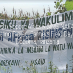 Photo report: Africa RISING-NAFAKA scaling project farmers field day meetings in Dodoma, Tanzania