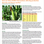 How Africa RISING interventions affecting production diversity and dietary quality