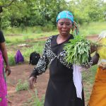Best of both worlds: Intercropping Napier grass with legumes boosts food  and livestock productivity in Ghana