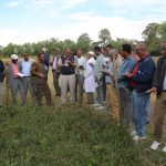 Ethiopia training develops partnerships and capacity for feed and forage farming